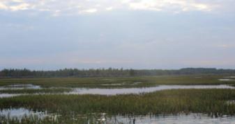 Озеро Рогізне