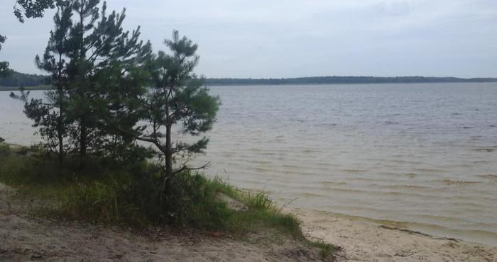 Узбережжя Білого озера