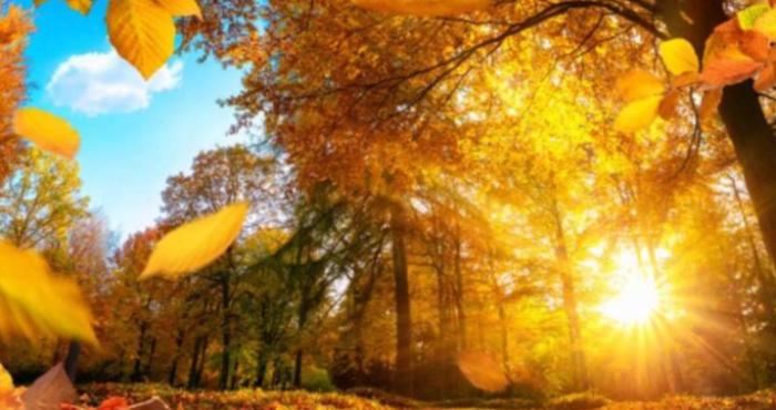 Прогноз погоди у Камінь-Каширському районі на 14 вересня