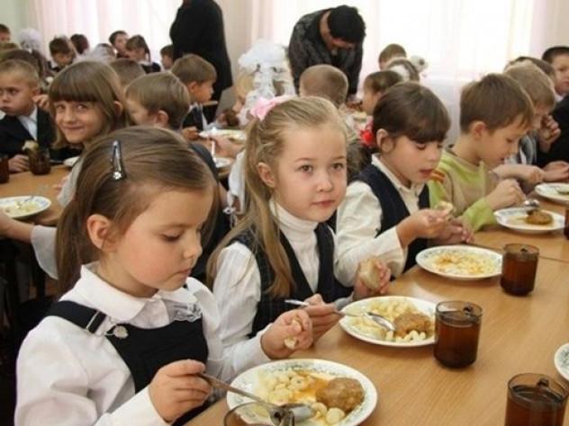 Школярів Камінь-Каширщини годуватиме київська фірма