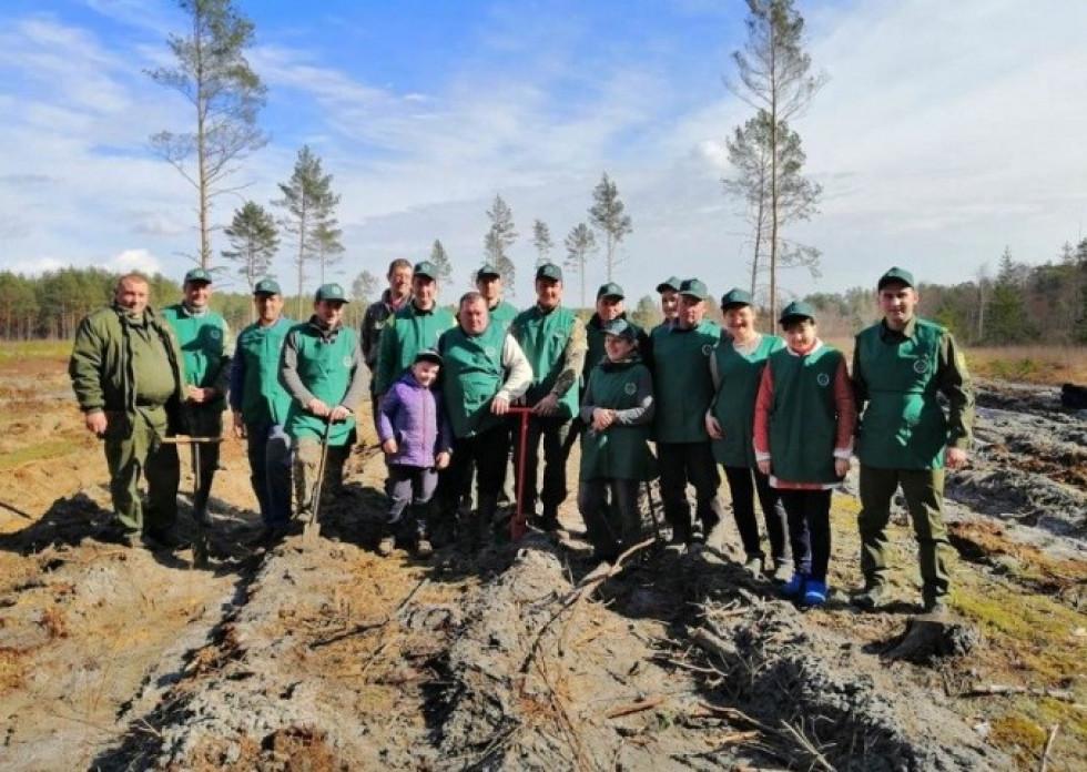 Працівники загальноосвітньої школи І-ІІІ ступенів села Полиці разом із лісівниками висаджують молодий ліс на території місцевого лісництва