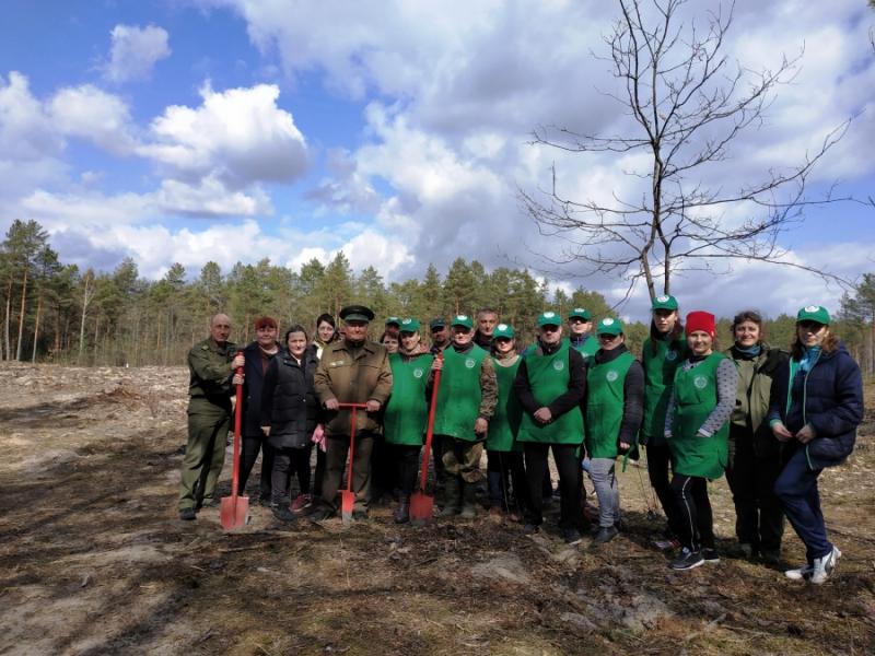 На Камінь-Каширщині відновлювали ліс у рамках Всеукраїнської акції