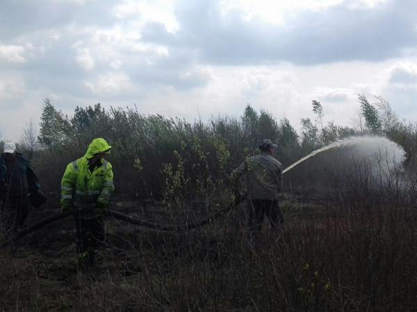 У Камінь-Каширському районі рятувальники гасять пожежу на торфовищі