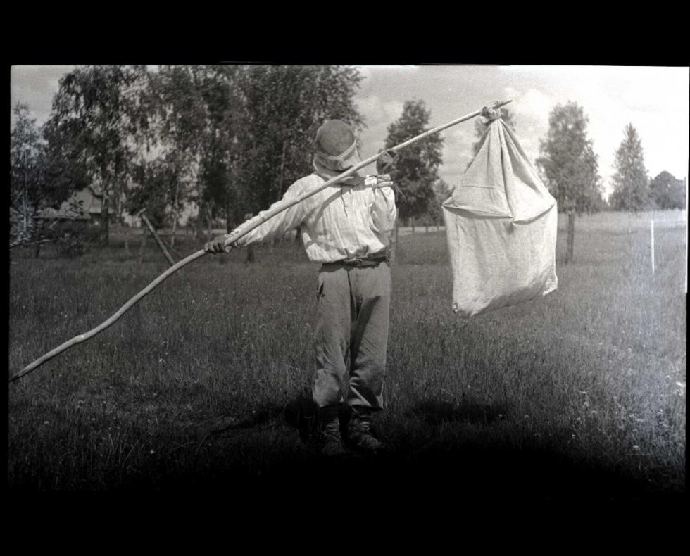 Місцеві мешканці займаються бджільництвом, Малий Обзир, 1934 р.