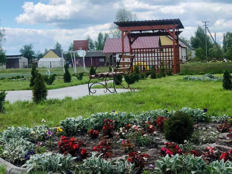 Камінь-Каширщина: юні лісівники створили малинову «плантацію»