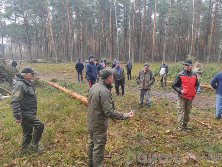 Селяни протестують проти вирубки лісу
