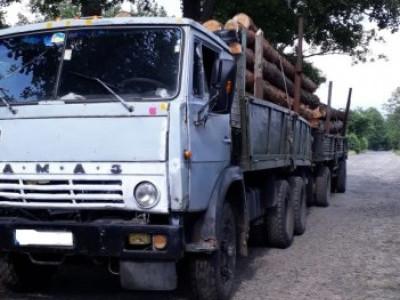 Тоболи: затримали КамАЗ із деревиною без документів