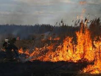 Камінь-Каширщина: горять торф та суха трава