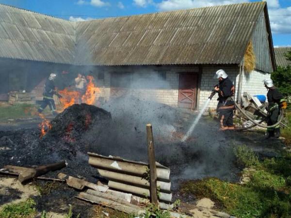У Бузаках згоріла підвода з сіном