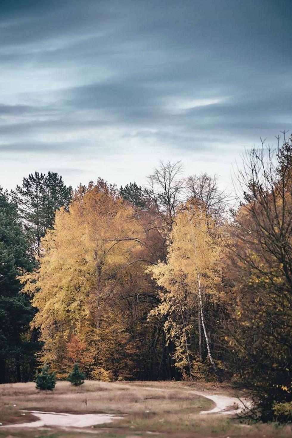 Фото: Андрій Куницький