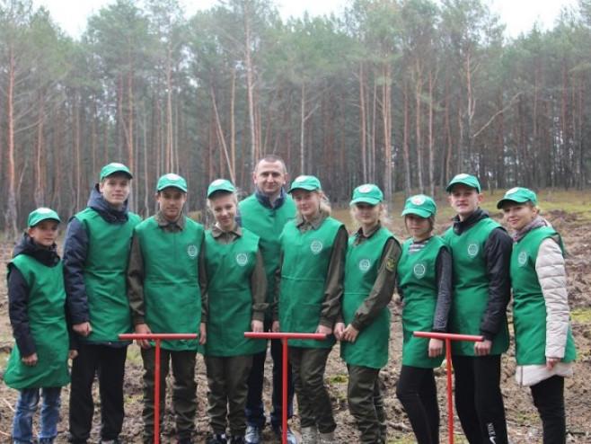 Учні Нуйнівського шкільного лісництва заліснили майже півтора гектари лісу