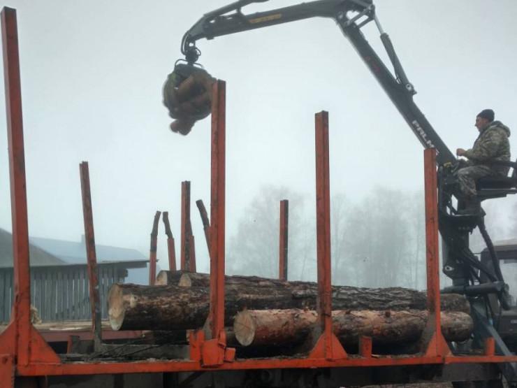 На Волині вилучили незаконну лісопродукцію
