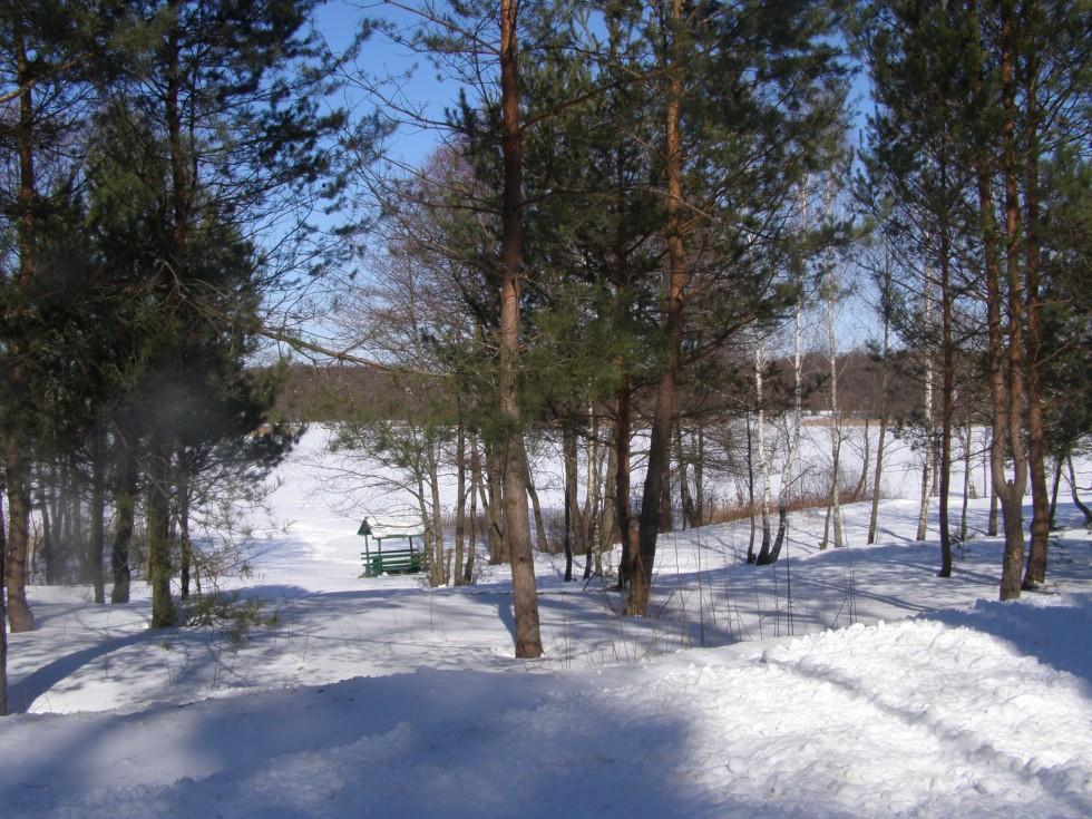 Вдалині видніється зимове озеро.