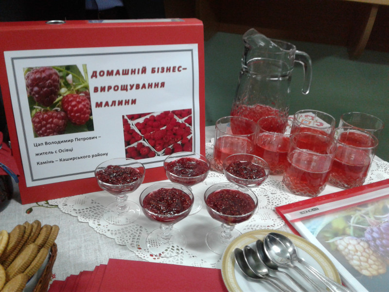 Домашній бізнес - вирощування малини