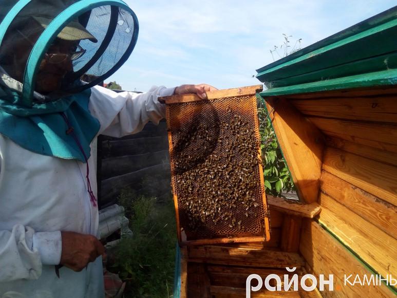 Бджоляр Петро Луцик