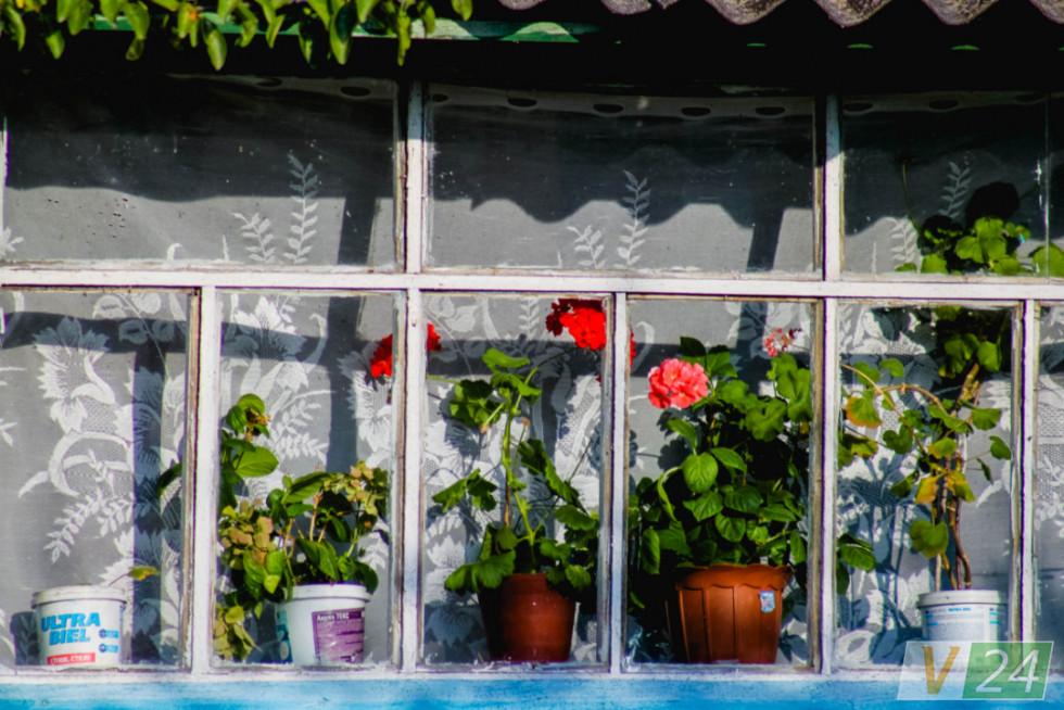 А вікна веранди ''сміються'' калачиками