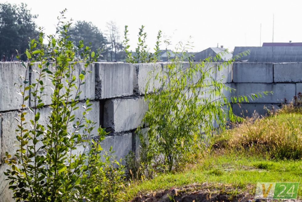 Тим часом на її городі заростає бур'янами і березами незбудована школа